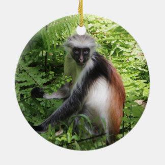 Sansibar rote Colobus-Affe-Verzierung