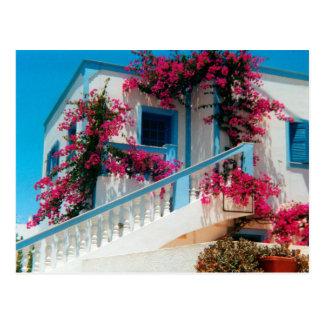 Santorini Blumenpracht Postkarte
