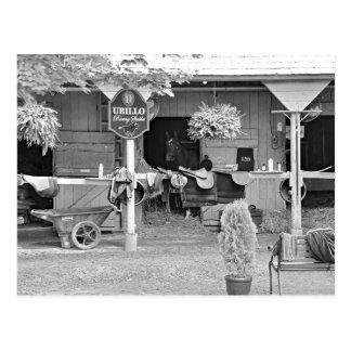 "Saratoga Ställe ""Pferdehafen "" Postkarte"