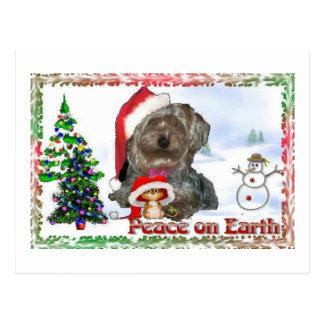 Sasha Sydney seidige HundemäuseFeriengeschenke Postkarte
