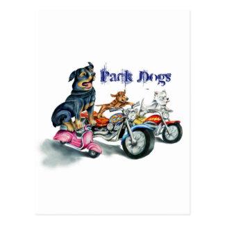 Satz-Hunde Postkarte