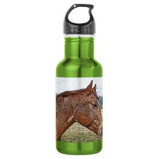 Sauerampfer-Pferdeporträt-pferdeartige Trinkflasche