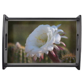 Säulenkaktus-Blume Tablett