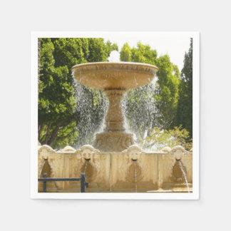 Sausalito Brunnen-Kalifornien-Reise-Fotografie Papierserviette