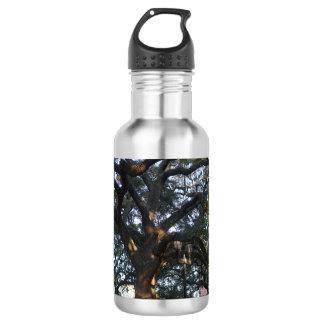 Savanne-Eiche Edelstahlflasche