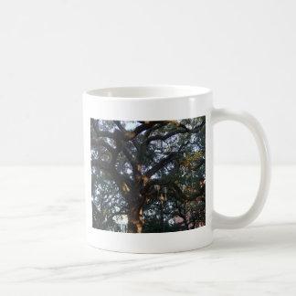 Savanne-Eiche Kaffeetasse