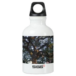 Savanne-Eiche Wasserflasche
