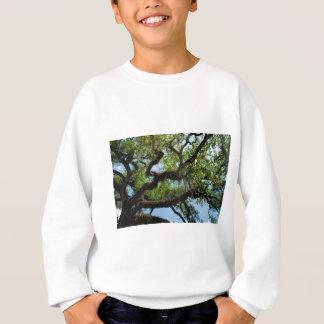 Savanne Live Oak und spanisches Moos Sweatshirt