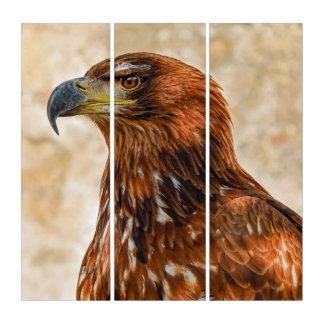 Savanneadler Triptychon