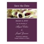 Save the Date Postkarten, lila Calla-Lilien