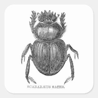 Scarabäus-Käfer Quadratischer Aufkleber