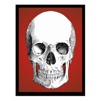 Schädel-Postkarte (rot)