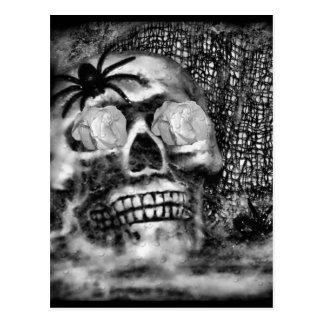 Schädel-Spinne und Rose-2012 Postkarte