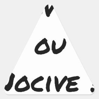 SCHÄDLICHER NEULING ODER? - Wortspiele - Francois Dreieckiger Aufkleber