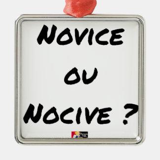 SCHÄDLICHER NEULING ODER? - Wortspiele - Francois Silbernes Ornament