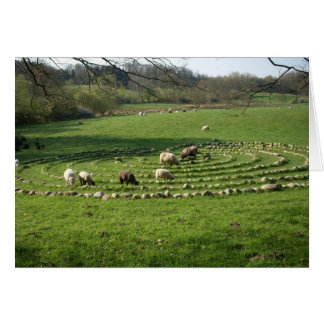Schafe, die ein Labyrinth - Stille weiden lassen Karte