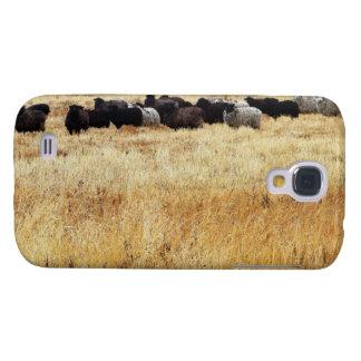 Schafe im trockenen Gras Galaxy S4 Hülle