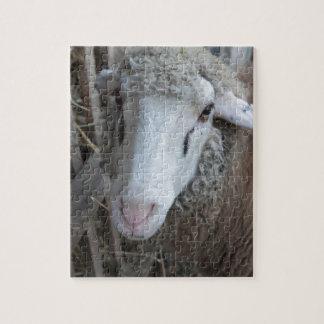 Schafe mit Heu Puzzle