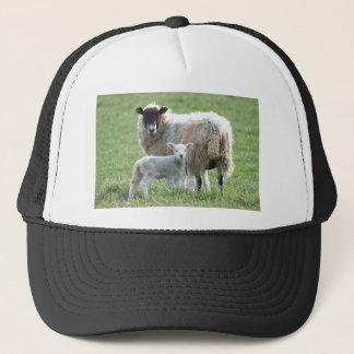 Schafe mit ihrem Lamm Truckerkappe
