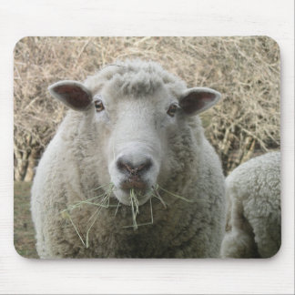 Schafe Mousepad