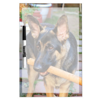 Schäferhund durch Shirley Taylor Memoboard