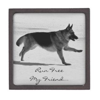 Schäferhund-Foto-Haustier-Denkmal-Kasten Kiste