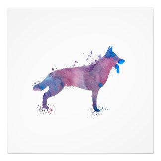 Schäferhund Fotodruck