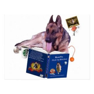 Schäferhund-Lesebuch Postkarte