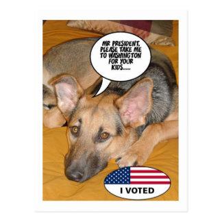 Schäferhund-Spaß Postkarte
