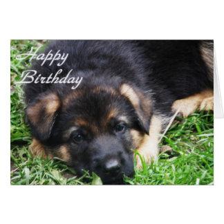 Schäferhund-Welpe - Geburtstagskarte Karte