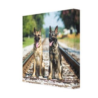 Schäferhunde auf Bahnstrecken Leinwanddruck