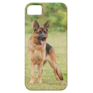 Schäferhundhund Schutzhülle Fürs iPhone 5