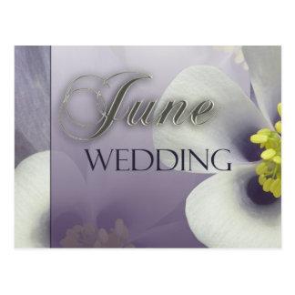 Schaffen Sie Ihre eigene lila Juni-Hochzeit Postkarte