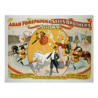 Schaltjahr-Damen-/Clown-Frauen-Zirkus-Plakat Postkarte