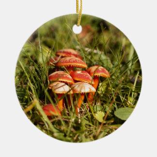 Scharlachrot Haubenpilze, Hygrocybe coccinea Keramik Ornament