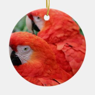 Scharlachrot Macaw- Keramik Ornament