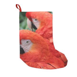 Scharlachrot Macaw- Kleiner Weihnachtsstrumpf