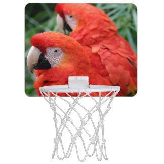 Scharlachrot Macaw- Mini Basketball Netz
