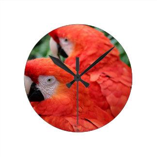 Scharlachrot Macaw- Runde Wanduhr
