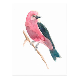 Scharlachrot Tanager- Postkarte