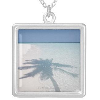Schatten einer Palme auf einem verlassenen Versilberte Kette