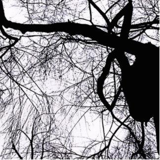 Schattenbaum Fotoskulptur Ornament