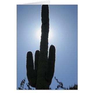 Schattiger Saguaro Karte