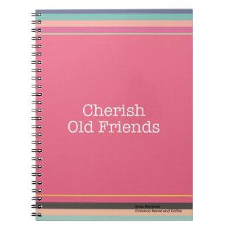 Schätzen Sie alte Freund-Notizbuch Spiral Notizblock