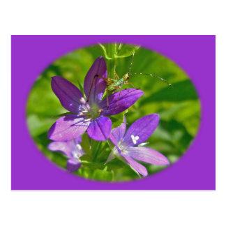 Schauendes Glas-Wildblume Venus mit Blumen Postkarte