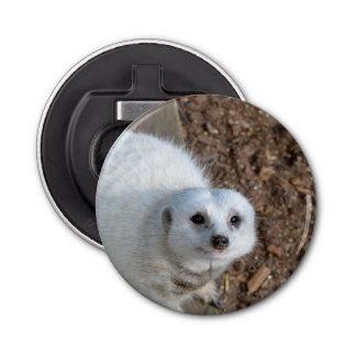 Schauendes White_Meerkat, magnetische Runder Flaschenöffner
