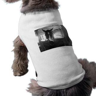 Scheunen-Pferd Shirt
