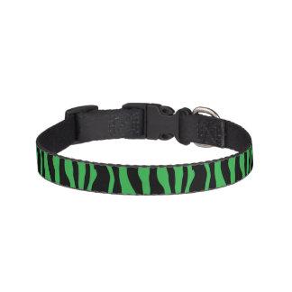 Schicker grüner Zebra-Druck Haustierhalsband