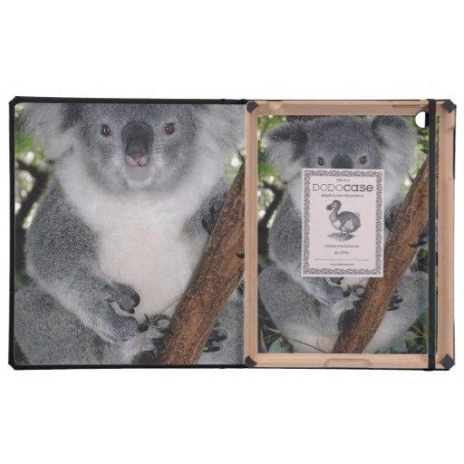 Schicksal Zazzle niedlicher Koala Aussi Outback iPad Hüllen