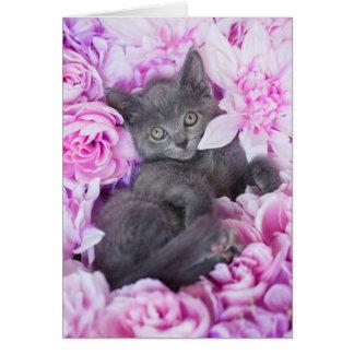 Schieferdecker-graues Kätzchen-lila Blumen Karte